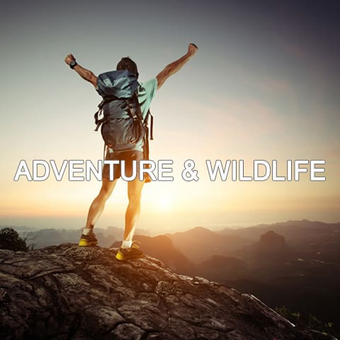 ADVENTURE&WILDLIFE-WHITE