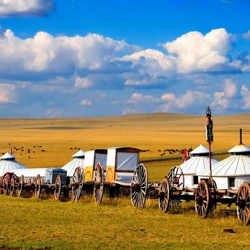 Mongolia 500