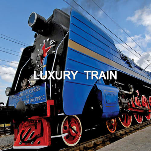 LUXURY TRAIN-WHITE