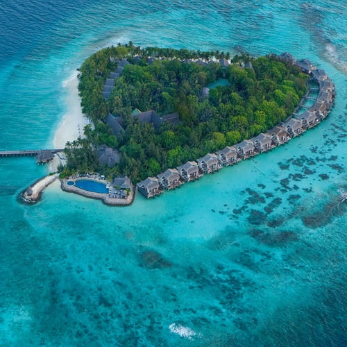 Vivanta by Taj - Coral Reef Maldives