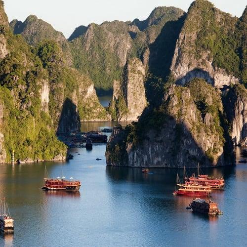 A Taste of Vietnam 500