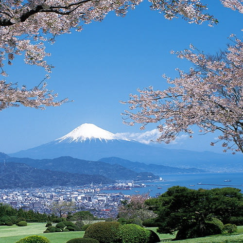 Mt. Fuji500
