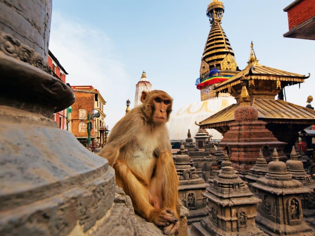 Swayambhunath Stupa 1024