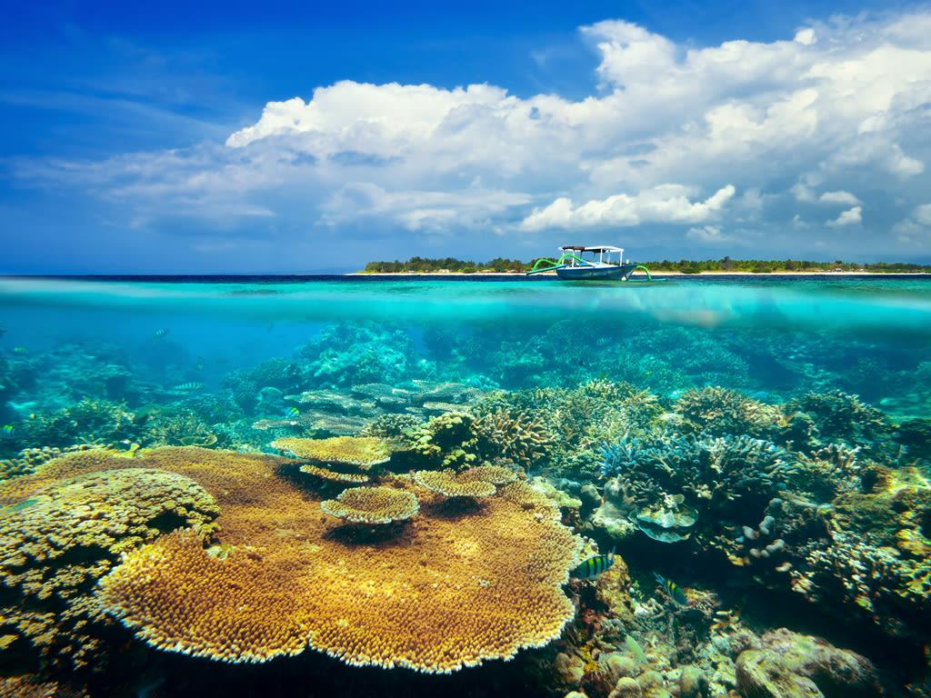 lombok - photo #32