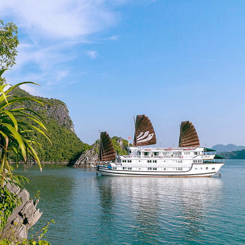 Bhaya Classic Cruise