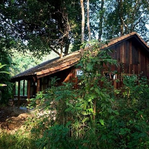 Forest Floor Lodge