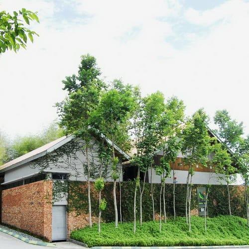 Belum Rainforest Resort500