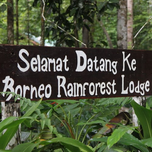 Borneo Rainforest Lodge4-500