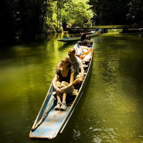 ECO & AGRO TOURISM - MULU NATIONAL PARK SARAWAK